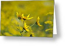 The Golden Wildflowers Greeting Card