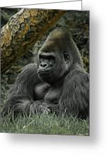 The Gorilla 3 Greeting Card