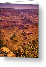 The Grand Canyon From Bright Angel Lodge Greeting Card