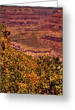 The Grand Canyon II Greeting Card