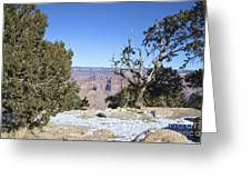 The Grand Canyon In January Greeting Card