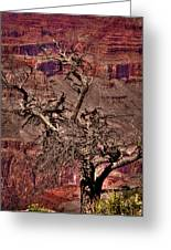 The Grand Canyon Viii Greeting Card