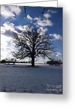 The Grand Tree Season Winter Greeting Card