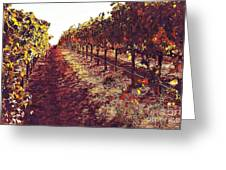 The Grapes Of The Wine Country Greeting Card
