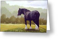 The Grass Is Greener  Greeting Card by John Silver