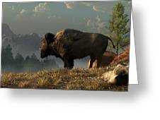 The Great American Bison Greeting Card