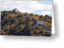 The Great Wall 632c Greeting Card