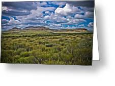 The Green Desert Greeting Card