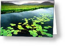 The Green Of Our Land Greeting Card