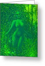The Green Wood Nymph Calls Greeting Card