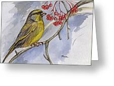 The Greenfinch Greeting Card