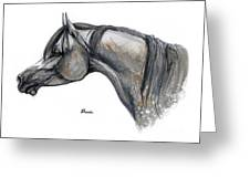 The Grey Arabian Horse 11 Greeting Card