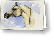 The Grey Arabian Horse 12 Greeting Card