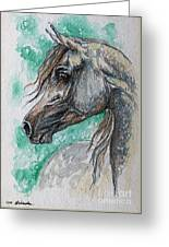The Grey Arabian Horse 13 Greeting Card