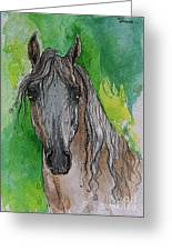 The Grey Arabian Horse 17 Greeting Card