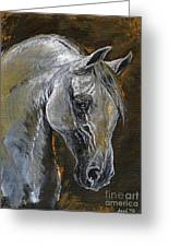 The Grey Arabian Horse Oil Painting Greeting Card