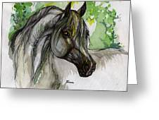 The Grey Horse Drawing Greeting Card