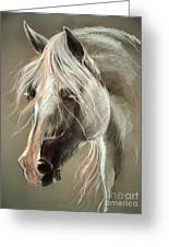 The Grey Horse Soft Pastel Greeting Card