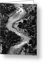 The Gunnison Bw Greeting Card
