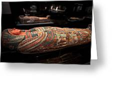 The Hall Of Ancient Egypt Mummy Room Greeting Card