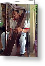 The Harp Man Greeting Card