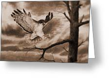 The Hawk Is Landing Greeting Card