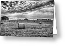 The Hay Bails Greeting Card