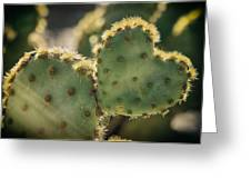The Heart Of A Cactus  Greeting Card