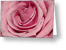The Heart Of A Rose Greeting Card