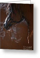 The Horse Portrait Greeting Card