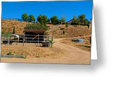 The Horse Ranch 2 Greeting Card