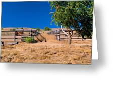 The Horse Ranch Greeting Card