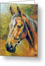 The Horse's Head Greeting Card