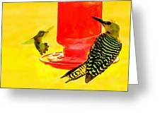 The Humming Bird And Gila Woodpecker Greeting Card