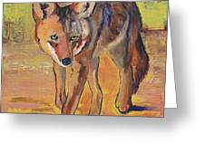 Coyote Hunting Greeting Card
