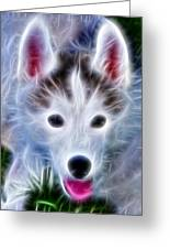 The Huskie Pup Greeting Card by Bill Cannon