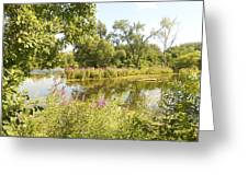 The Indiana Wetlands 2 Greeting Card