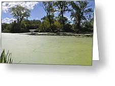 The Indiana Wetlands Greeting Card