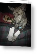 The Injury Greeting Card