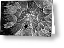 The Inner Weed Monochrome Greeting Card