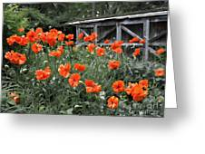 The Inspiration Of Orange Poppies Greeting Card