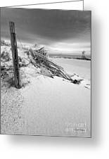 The Jetty Greeting Card by Michelle Wiarda