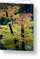 The Joy Of Being In Autumn Greeting Card