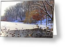 The Lake In Winter Greeting Card