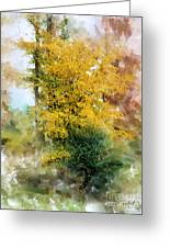 The Lake Trees Greeting Card