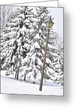 The Lamp And The Tree Greeting Card by Frederico Borges