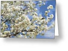 The Language Of Spring Greeting Card