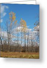 The Last Leaves Greeting Card