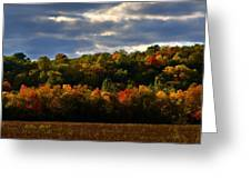 The Layers Of Autumn Greeting Card by Julie Dant