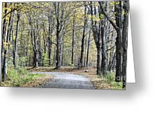 The Leaves Are Falling Greeting Card